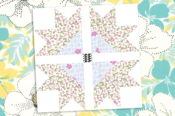 teaser image for Spring Flowers: Daisy blog post